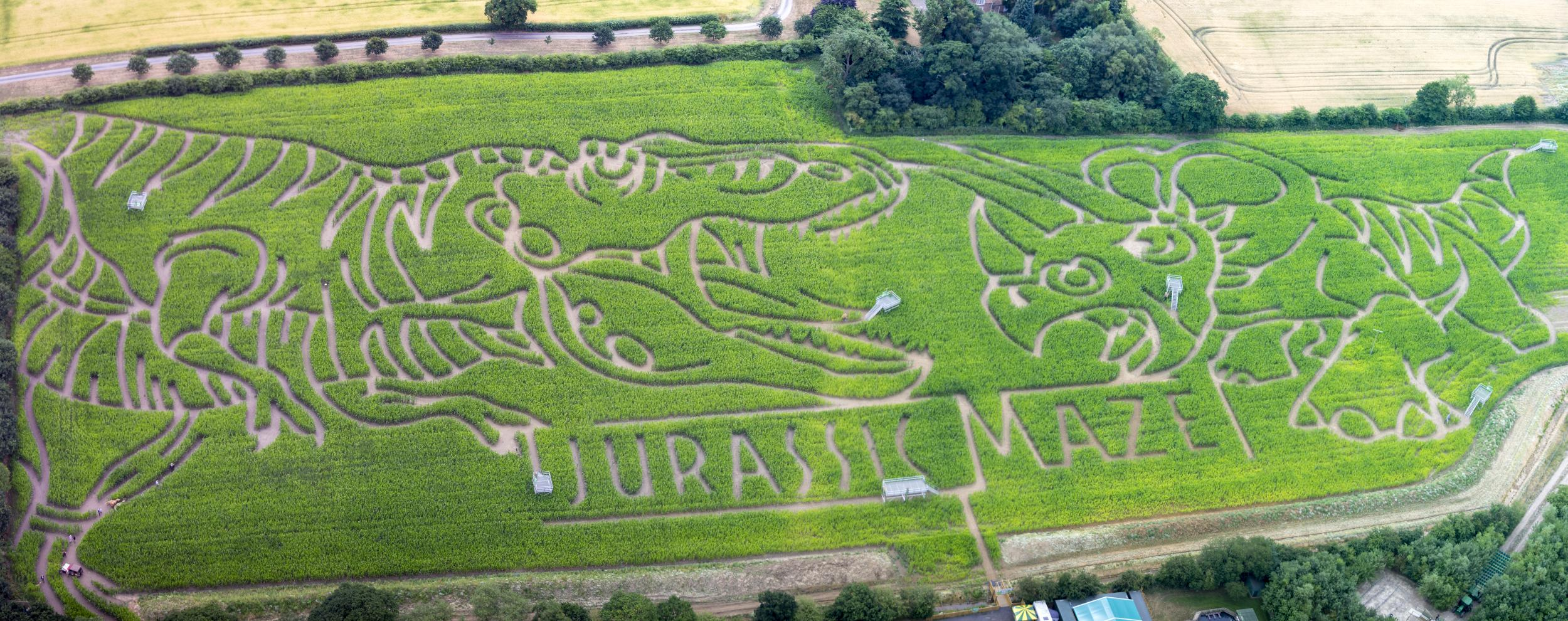 York Maze Aerial Photography